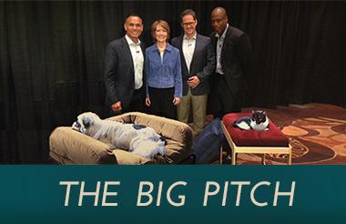 TheBigPitch