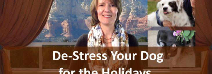 De-Stress Your Dog for the Holidays!
